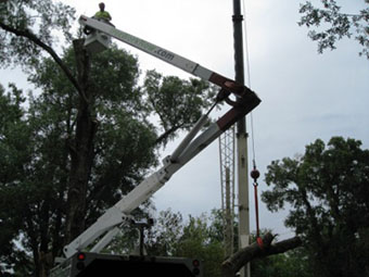 Tree service in Orlando removing large heavy log with crane