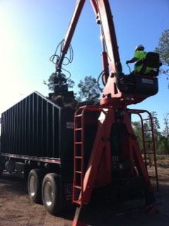 Tree service in Orlando using high quality equipment to remove debris