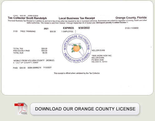Licenses permits florida fishing license share the for Fishing license florida